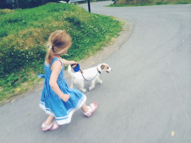 Little Tilda in her blue dress & Milli #dogwalk