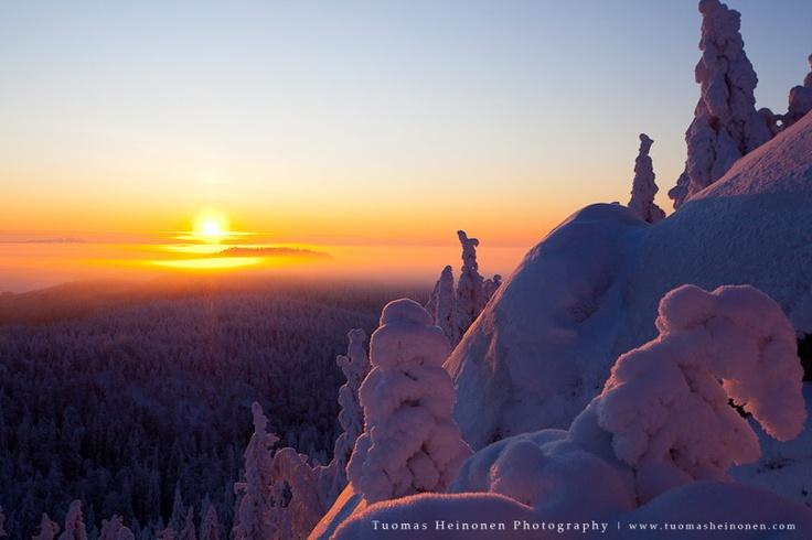 sunset at Koli national park in North Karelia, Finland.