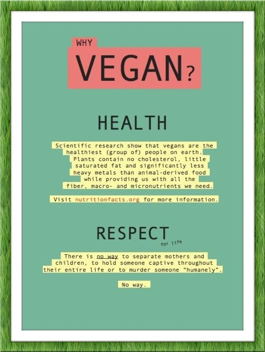 the reasons why we become vegetarians There are many reasons why people choose to go vegetarian or why you should think twice about vegetarian and i never felt great after become vegan.
