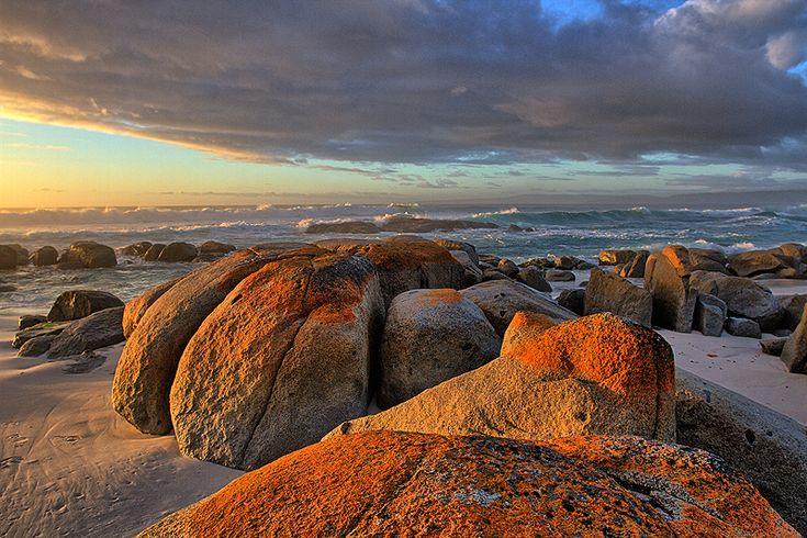 חופים קדמונים ושדים טזמניים. טזמניה, אוסטרליה