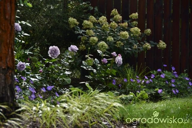 Do It Yourself Home Design: 1000+ Images About Garden On Pinterest