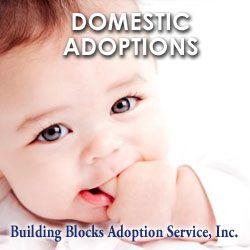 Adoption is an option. It is part of my life and my families life.