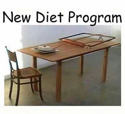 Lol, think I will pass on this diet plan!