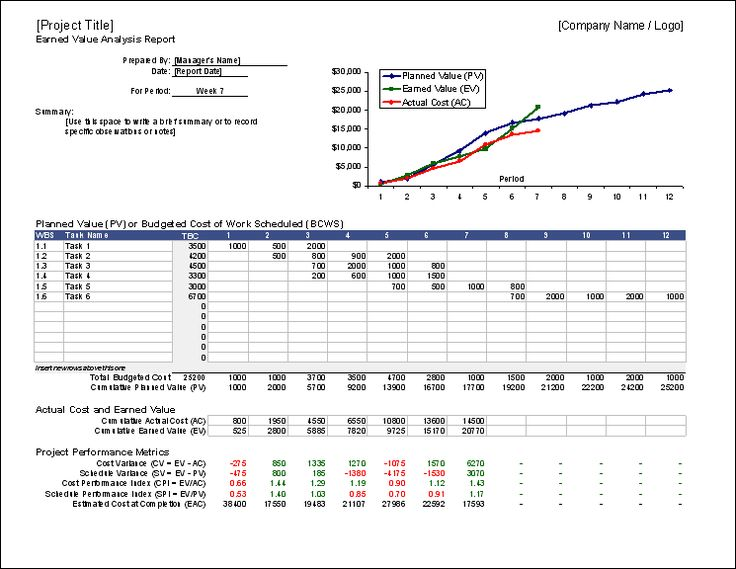 Earned Value Management Template