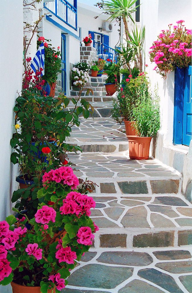 Flower Steps - Kythnos, Greece