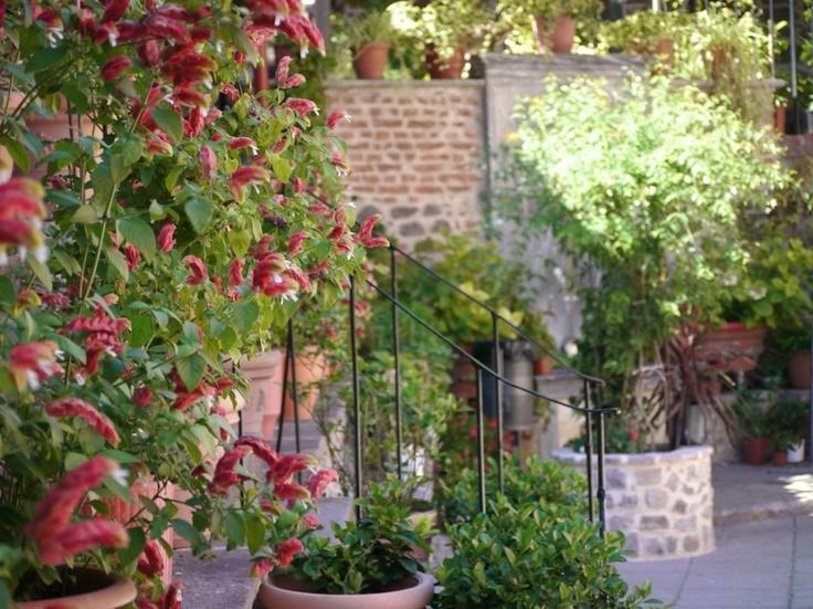 Flower Garden, Taxiarchis, Lesbos, Greece