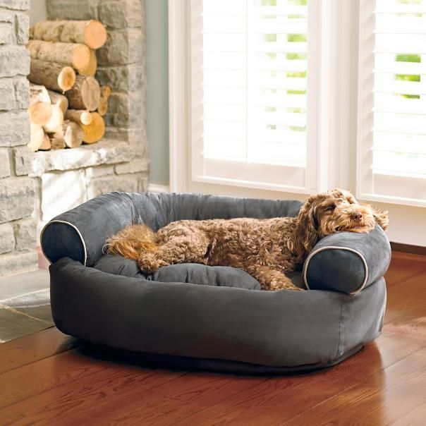 Best 25+ Dog sofa bed ideas on Pinterest | Cushions on bed ...