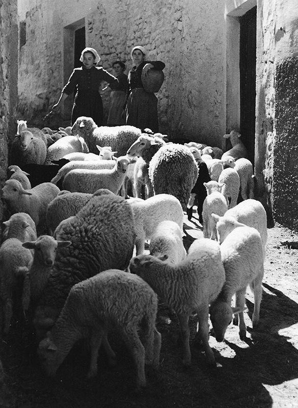 fotos antiguas de barcelona fotos de españa pueblos de cataluña