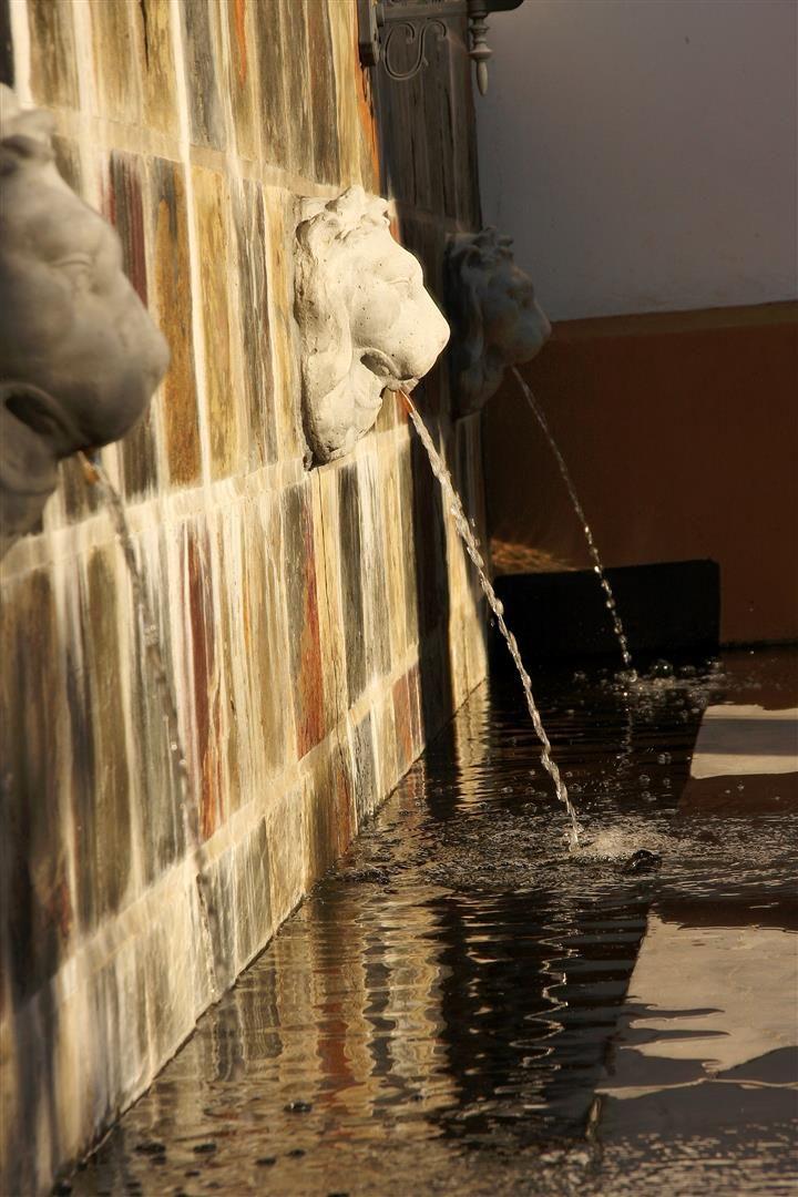 Gallery   Allesverloren Fountain