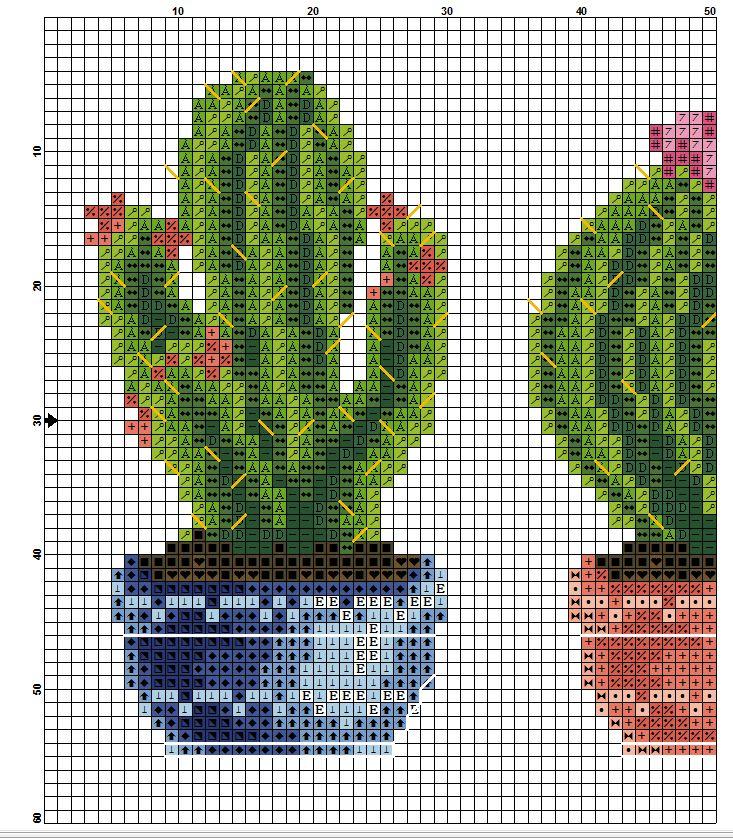 kaktusy hh 3