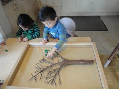 blog about a Reggio Emilia classroom with lots of natural activites. Can't tell if the tree is under plexiglass and the leaves go on top? Cool...