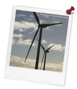 (ACTDEP006); Explores the topic of wind and wind energy; designing and creating a wind turbine; understand that we can use wind to create energy and electricity; recognise words and text relating to wind and weather.
