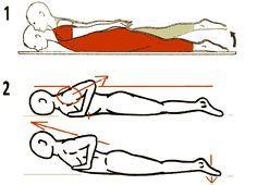 Le Rhomboide, muscle pour redresser le dos rond