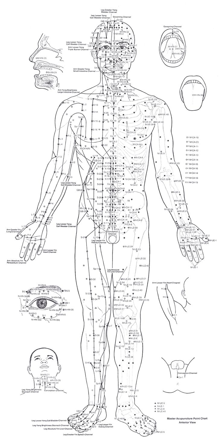 Acupuncture Chart - Front