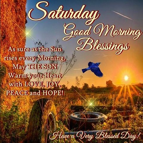 Good Morning, Happy Saturday. I pray that you have a safe and blessed day!!