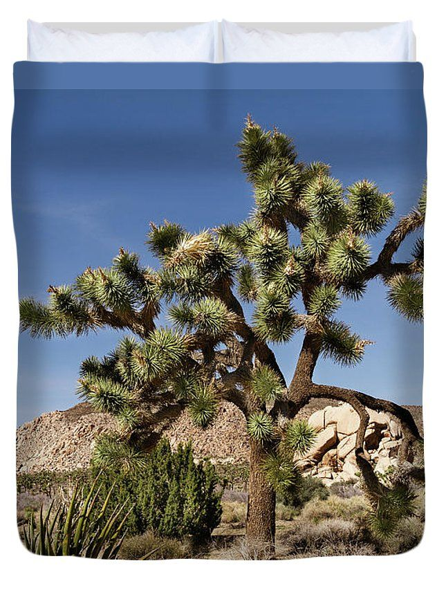 Evgeniya Lystsova Duvet Cover featuring the photograph Joshua Tree by Evgeniya Lystsova. Landscape of Mojave desert and Joshua tree in California with blue sky, Joshua Tree National Park, USA. Make your Home Special with Stylish Art Products you choose! Our soft microfiber duvet covers are hand sewn and include a hidden zipper for easy washing and assembly. Your selected image is printed on the top surface with a soft white surface underneath. #DuvetCover #Desert #JoshuaTree #Travel…