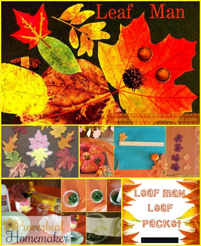 Leaf Man Literature Unit Study - Enjoy this fantastic unit study with great crafts and activities, and download a FREE printable pack to go with it!
