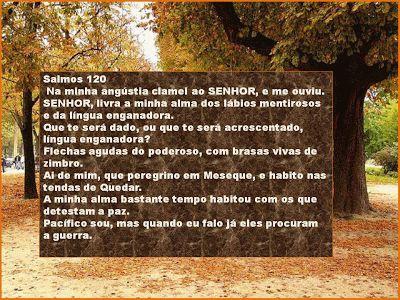 SALMOS: SALMO 120