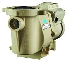 5 Best Pool Pump Reviews: A Complete Guide