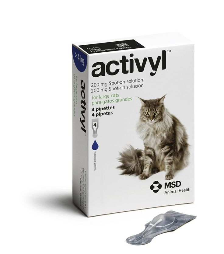 ACTIVYL Cat 200 mg Spot On Flea Treatment Solution Large Cats >8 lbs 4 Pipettes >>> Learn more by visiting the image link.