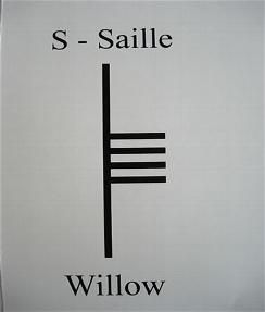 S is for Saille, pronounced sahl-yeh, and is associated with the Willow tree. The Willow is often found near water, and when nourished it will grow rapidly. This symbol is representative of knowledge and spiritual growth, as well as being connected with the month of April.