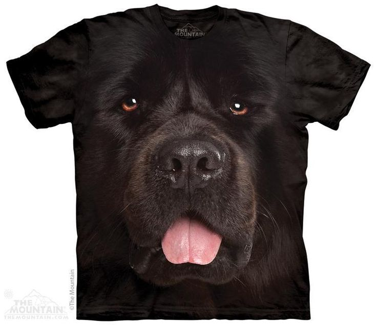 Newfoundland Face T Shirt