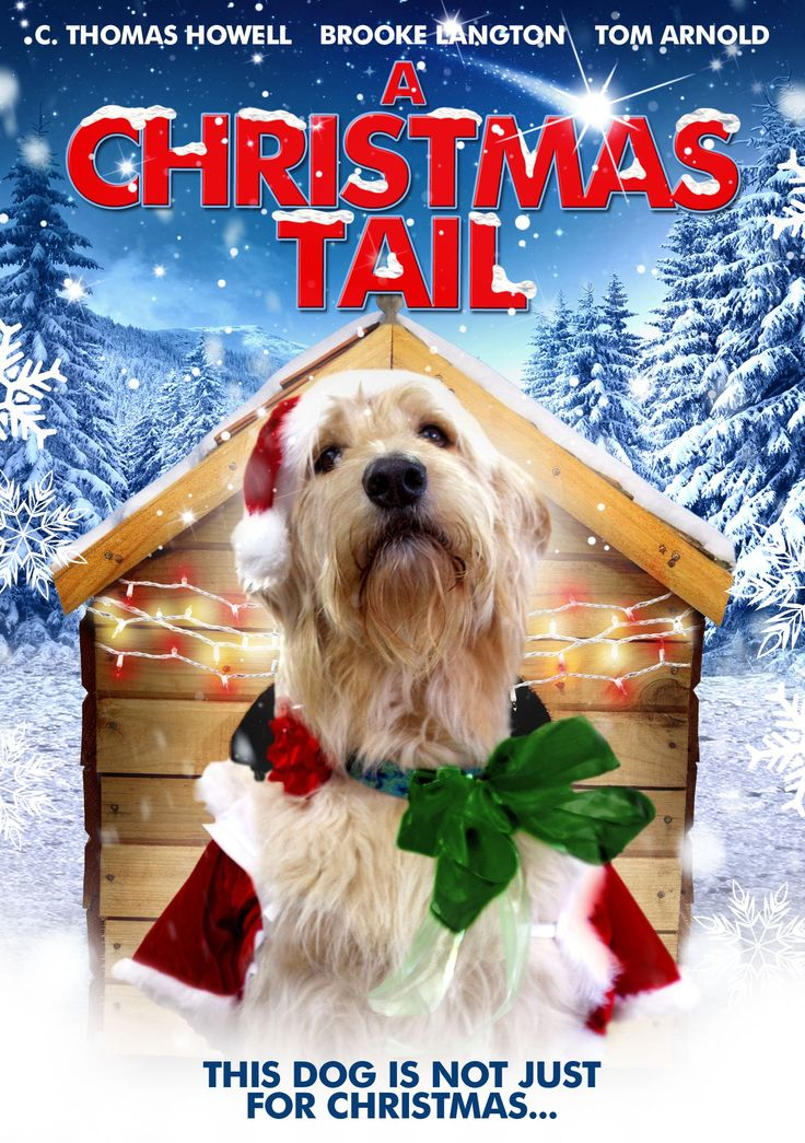 A christmas tail dvd amazoncouk tom arnold c
