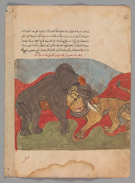 """The Lion and the Elephant Fighting"", Folio from a Kalila wa Dimna 18th century Geography: Egypt or Syria"