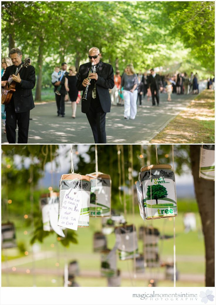 Lourensford Wedding with Letitia and David