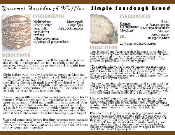 how to make a sourdough culture