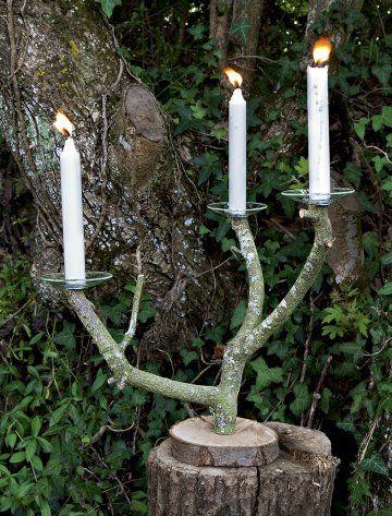 Une branche d\'arbre transformée en chandelier/a branch of tree transformed in chandelier