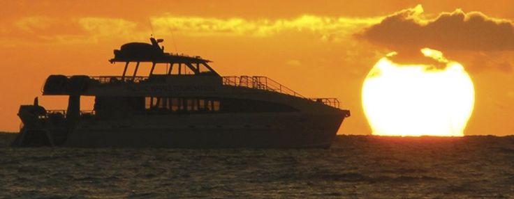 Maui Sunset Dinner Cruise Maui Activities Travel