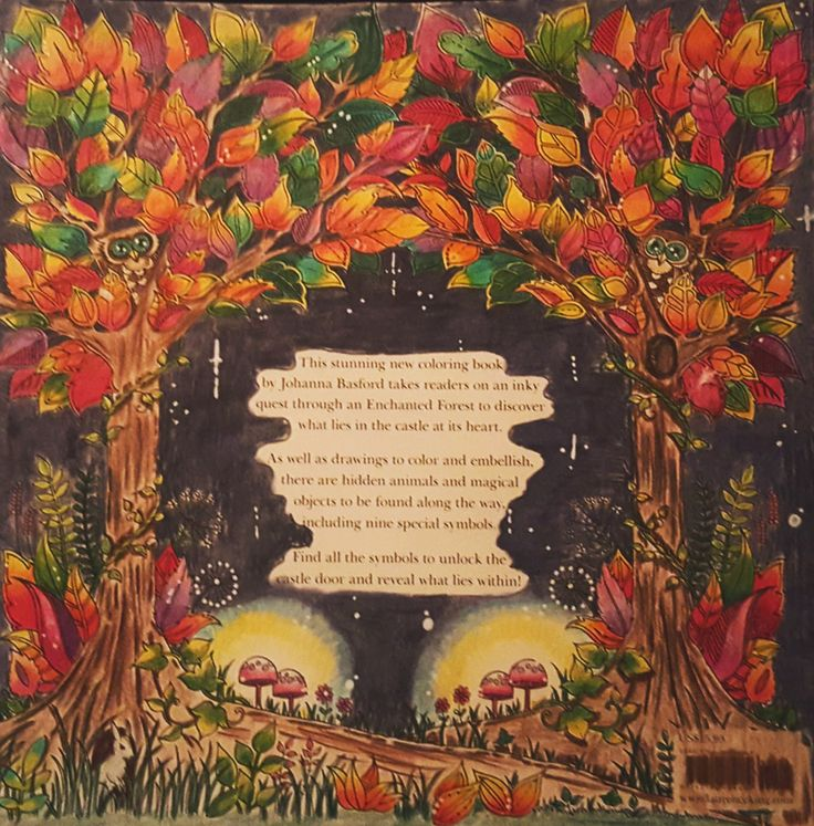 Enchanted Forest Back Cover - Gorgeous gorgeous coloring by Reddit user /u/NurseJoyIRL #coloring #inspiration