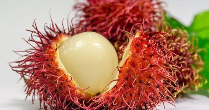 Manfaat Buah Rambutan Nephelium Lappaceum