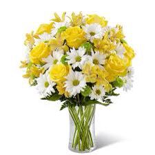Yellow with white flowers