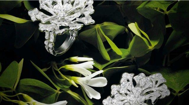 Драгоценности - Эксклюзивные ювелирные изделия и Элитные украшения