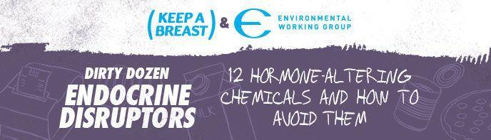 Dirty Dozen List of Endocrine Disruptors | Environmental Working Group #chemicals #hormone #disruptors