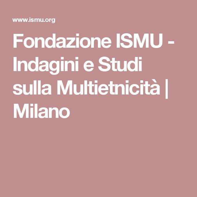 Fondazione ISMU - Indagini e Studi sulla Multietnicità | Milano