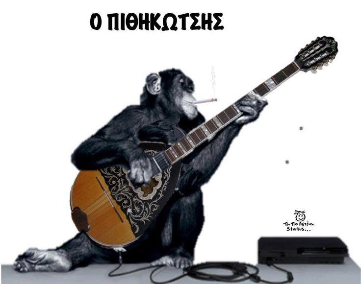 Αστείες Εικόνες με Ζώα - Anekdotakias.