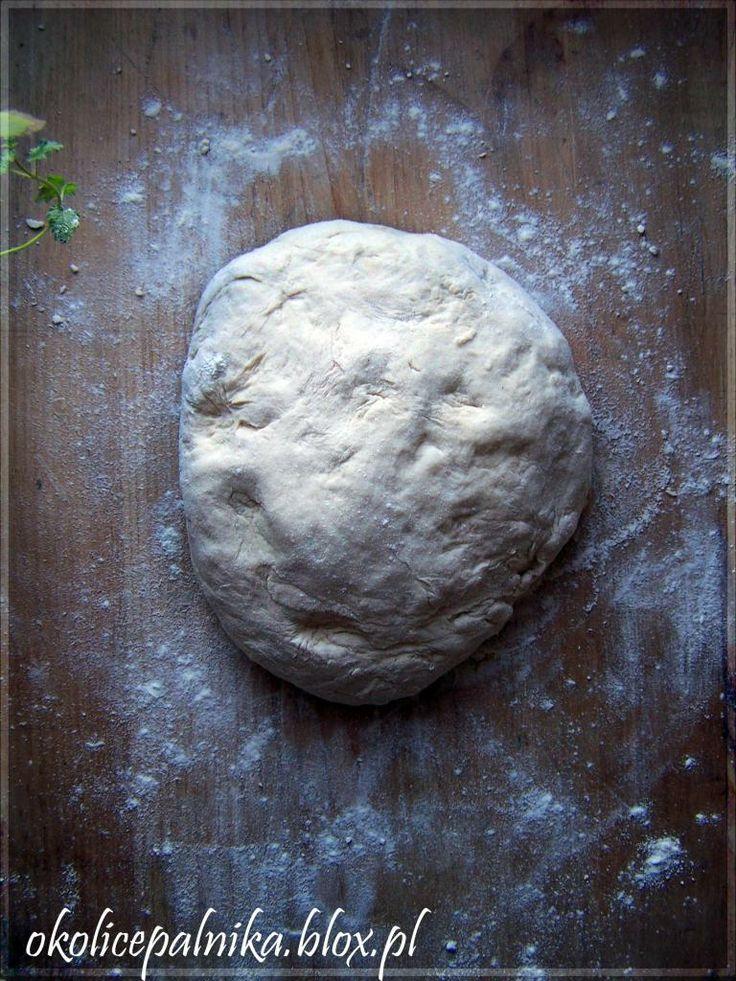 Idealne ciasto na pizze i nie tylko  http://okolicepalnika.blox.pl/2013/12/Idealne-ciasto-na-pizze-i-nie-tylkoci.html