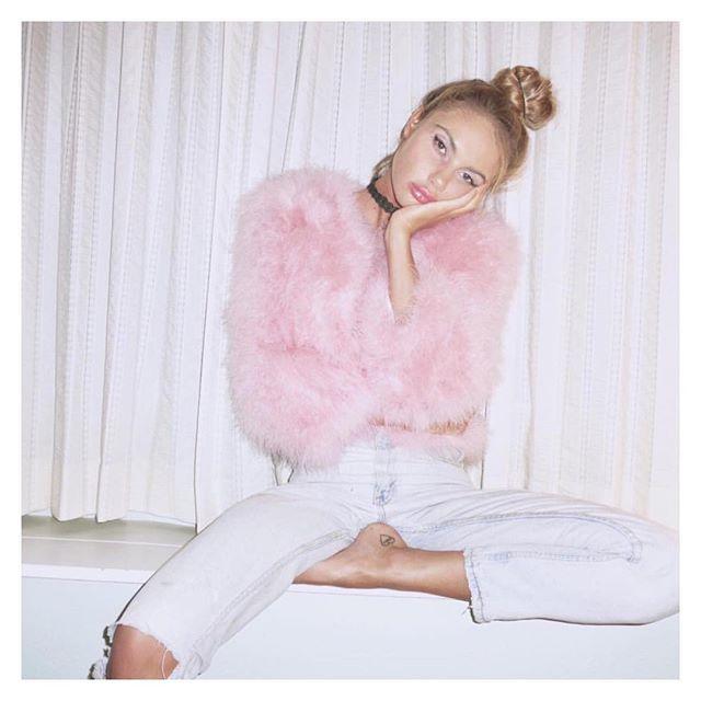 Purdy in pink #furgurl  @sahara_ray . www.ShopJocelyn.com