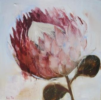 Nicole Pletts - Protea 3, oil on canvas