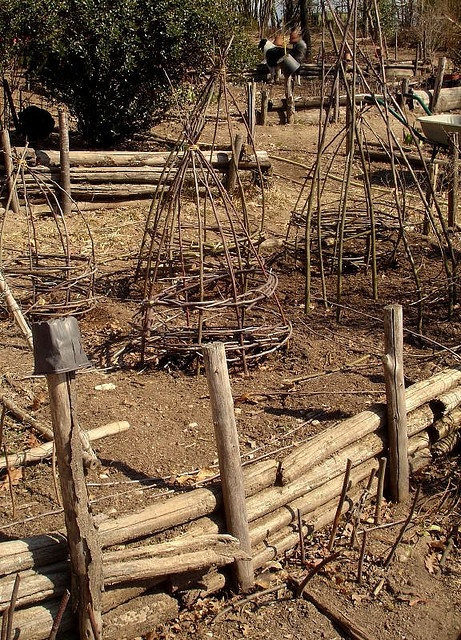 1000 images about plant protection from animals on - How to protect vegetable garden from animals ...
