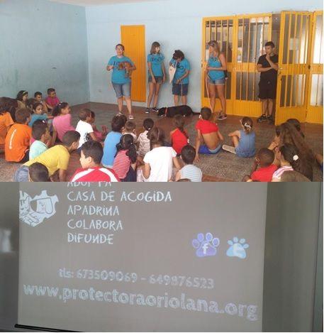 La mañana del 11 de agosto, estuvimos en las escuelas de verano de #Orihuela. Lo pasamos genial. Esta vez los protagonistas y los que más caricias se han llevado, han sido Bross, Luna y Drilo. Muchas gracias a todos los que lo habéis hecho posible y a Oriverano, por contar con nosotros.
