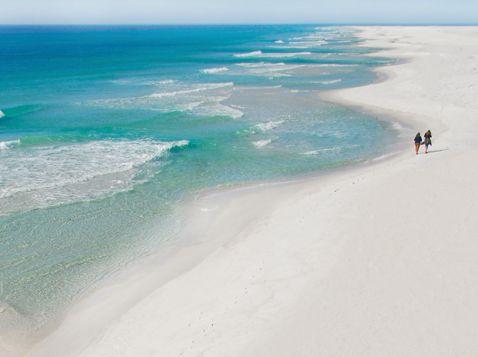 Honeymoon Island Travel Pinterest And Florida
