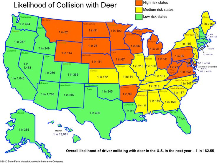 From the folks at State Farm (great for teaching ratios)…Likelihood of Collision with Deer... Lesson