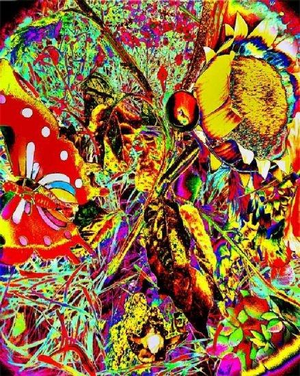 """Colori saturi, fluorescenti, elaborati in digitale a costruire immagini chiassose, gioiose, pop. E' ciò che presenta il fotografo #Nino #Miglioricon la raccolta di fotografie """"Il Giardino degli Angeli"""". Chi sono gli angeli? sono i bambini defunti alla Certosa di Bologna. Le fotografie ritraggono giocattoli, fiori e oggetti appartenenti alla realtà quotidiana restituendo un immaginario per nulla triste ma anzi, giocoso e fantastico."""