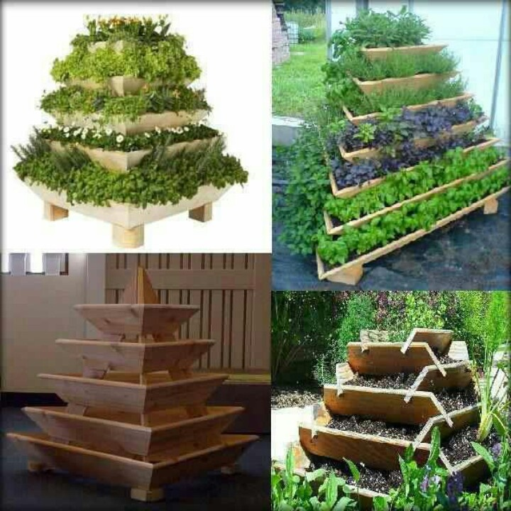 15 best Herb Garden images on Pinterest Gardening Raised bed