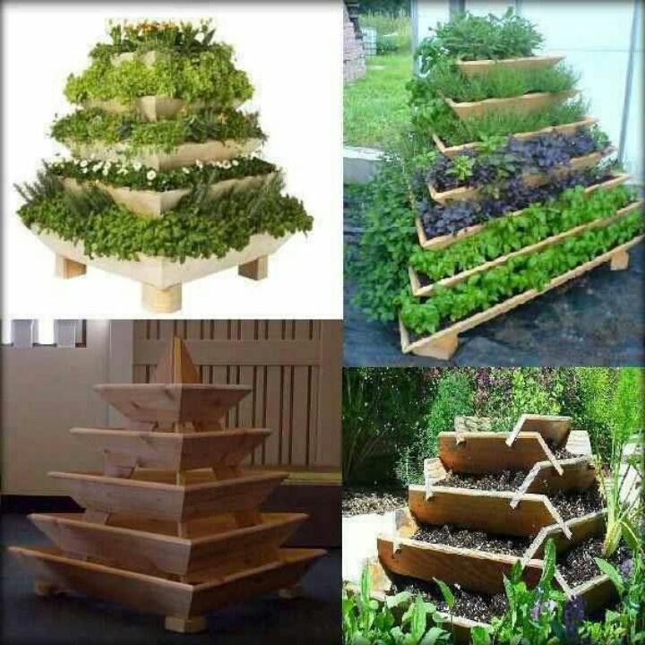 15 best herb garden images on pinterest