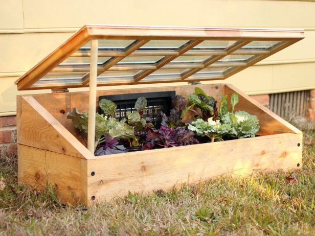 How to Build a Cold Frame - Protect your plants from frost with this inexpensive, easy-to-make cold frame.